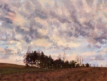 Col Accarias, olieverf, 19 x 25 cm, 3/2006, huile, Col Accarias