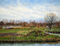 Weilanden bij Hillegom, olieverf, 19 x 25 cm, 2/2007, huile, Des prés à Hillegom