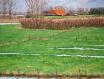 Ochtend te Rumpt, olieverf, 19 x 25 cm, 3/2007, huile, Rumpt - le matin