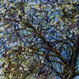 Voorjaar in Vianen, olieverf, 30 x 30 cm, 4/2015, huile, Printemps à Vianen