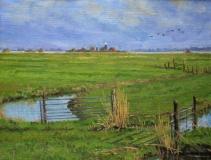 Polder IJdoorn, olieverf, 19 x 25 cm, 3/2007, huile, Polder IJdoorn
