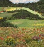Col de Cornillon, olieverf, 33 x 31 cm, juni 2005, huile, Col de Cornillon