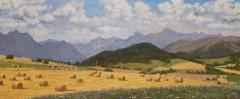 Col du Thaud, olieverf, 19 x 46 cm, 7/2006, huile, Col du Thaud