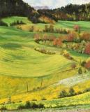 Grand Oriol, olieverf, 25 x 20 cm, 5/2007, huile, Grand Oriol