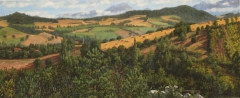 Chardeyre, olieverf, 19 x 46 cm, 8/2007, huile, Chardeyre