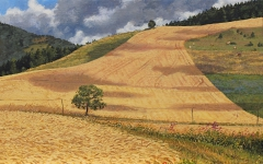 Col Accarias, olieverf, 25 x 40 cm, 8/2010, huile, Col Accarias