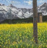 Ser du Cros, olieverf, 35 x 35 cm, 5/2012, huile, Ser du Cros