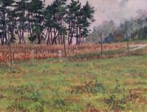 Col de Cornillon, olieverf, 19 x 25 cm, 10/2015, huile, Col de Cornillon