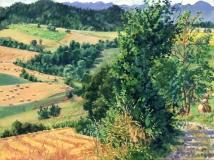 Omgeving Cornillon, olieverf, 31 x 41 cm, 8/2016, huile, Aux alentours de Cornillon