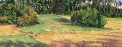 Masserange, olieverf, 20 x 50 cm, 8/2017, huile, Masserange