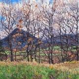De Menil, olieverf, 35 x 35 cm, 4/2018, huile, Le Menil, vu de Montvallon