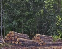 Boomstammen, olieverf, 24 x 30 cm, 7/2018, huile, Troncs d'arbres
