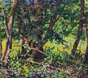 Zomer , olieverf, 20 x 22 cm, 8/2018, huile, Été
