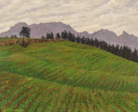 De Obiou, olieverf, 29 x 36 cm, 8/2000, huile, L'Obiou