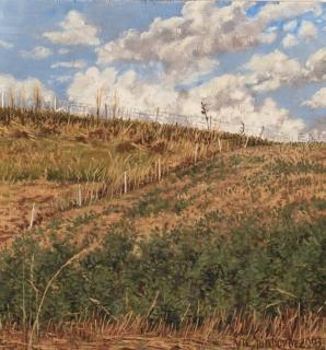 Berm, olieverf, 21 x 20 cm, 7/2003, huile, Herbes folles