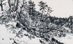 Villarnet, sumi-inkt, 24 x 40 cm, 10/2019, encre sumi, Villarnet