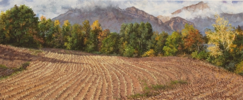 Marcellaire, olieverf, 19 x 46 cm, 10/2007, huile, Marcellaire