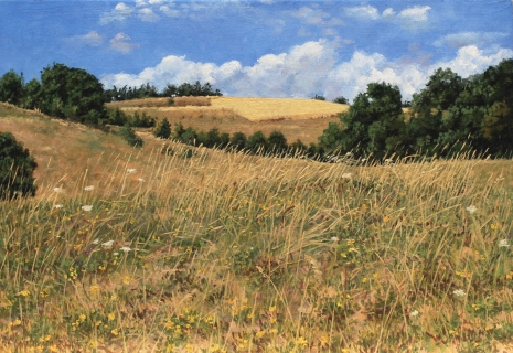 Ser de Villaret, olieverf, 24 x 35 cm, 7/2009, huile, Ser de Villaret