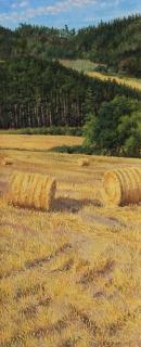 Col de Cornillon, olieverf, 46 x 19 cm, 8/2009, huile, Col de Cornillon