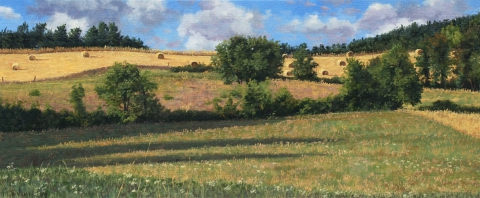 Ser de Villaret, olieverf, 19 x 46 cm, 8/2009, huile, Ser de Villaret