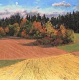 Masserange, olieverf, 35 x 35 cm, 10/2009, huile, Masserange