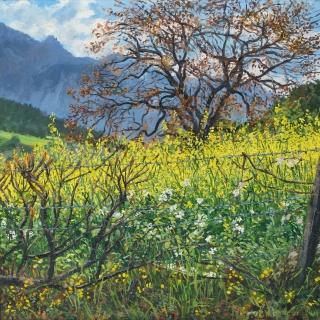 Vareille, olieverf, 35 x 35 cm, 4/2011, huile, Vareille