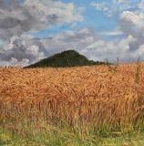 Serre de Milmaze, olieverf, 35 x 35 cm, 7/2011, huile, Serre de Milmaze