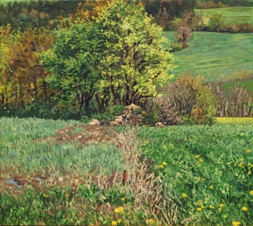 Ser du Cros, olieverf, 20 x 22 cm, 5/2012, huile, Ser du Cros