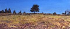 Ser de Villaret, olieverf, 19 x 46 cm, 3/2013, huile, Ser de Villaret