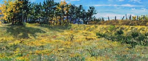 Montvallon, olieverf, 19 x 46 cm, 11/2014, huile, Montvallon
