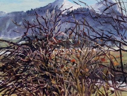 Uitzicht vanaf Col du Thaud, olieverf, 19 x 25 cm, 3/2015, huile, Vue du Col du Thaud
