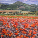 Pompoenen in St. Maurice, olieverf, 25 x 25 cm, 10/2015, huile, Champ de potirons à St. Maurice