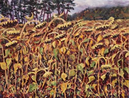 Zonnebloemen van Eric, olieverf, 19 x 25 cm, 10/2017, huile, Tournesols d'Eric