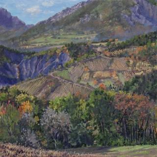 De wijnvelden van Roissard, olieverf, 35 x 35 cm, 10/2018, huile, Les vignes de Jérémy