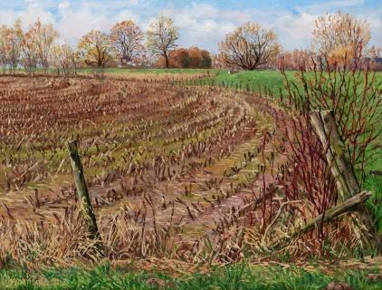 Maisveld bij Vianen, olieverf, 32 x 42 cm, 3/2012, huile, Environs de Vianen