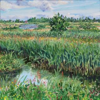Het Twiske,olieverf, 30 x 30 cm, 5/2020, huile, Het Twiske