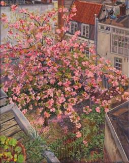 De tuin van de buren, Amsterdam,olieverf, 50 x 40 cm, 4/2020, huile, Amsterdam