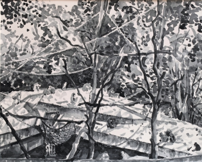 Apenrots in Artis, sumi inkt, 24 x 30 cm, 9/2018, encre sumi, Zoo d'Amsterdam