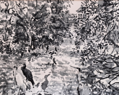 Aalscholvers en reigers in Artis, sumi inkt, 24 x 30 cm, 9/2018, encre sumi, Zoo d'Amsterdam