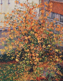 Herfst in Amsterdam, olieverf, 50 x 40 cm, 11/2020, huile, Automne à Amsterdam