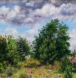 Col du Thaud, olieverf, 25 x 25 cm, 7/2014, huile, Col du Thaud