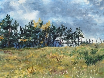 Montvallon, olieverf, 19 x 25 cm, 11/2014, huile, Montvallon