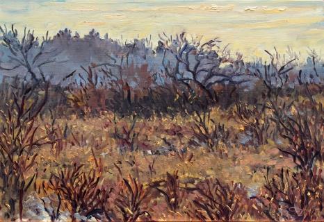 Duinen bij Castricum, olieverf, 18 x 26 cm, 2/2017, huile, Les dunes à Castricum