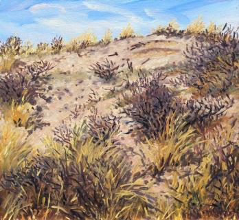 Duin bij Castricum, olieverf, 25 x 27 cm, 3/2017, huile, Les dunes à Castricum