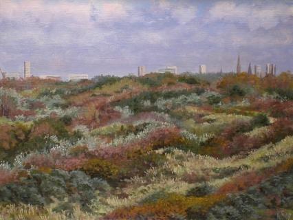 Gezicht op Den Haag, olieverf, 19 x 25 cm, 9/2007, huile, Vue sur La Haye