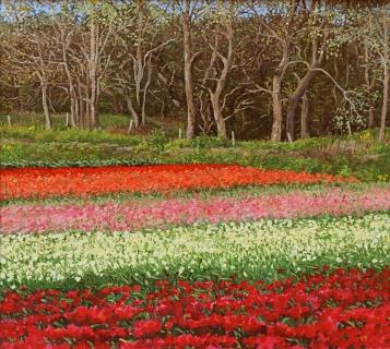 Tulpenveld in Castricum, , 4/2010, olieverf, 29 x 32 cm, huile, Champ de tulipes à Castricum