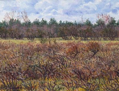 Wei van Brasser - Castricum, olieverf, 19 x 25 cm, 4/2012, huile, Castricum
