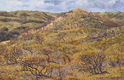 Duinen bij Bakkum, olieverf, 24 x 38 cm, 4/2012, huile, Dunes à Bakkum