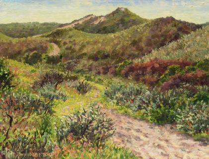 Duinen bij Castricum, olieverf, 19 x 25 cm, 4/2012, huile, Dunes à Castricum