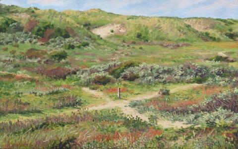 Duinen bij Castricum, olieverf, 24 x 38 cm, 6/2012, huile, Dunes à Castricum
